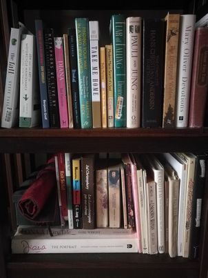 Faith Currant's bookshelf